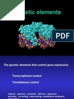 Genetic Elements