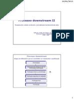Aula Processo DOWNSTREAM - Rompimento Celular