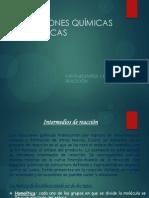 Intermediarios y Mecanismos