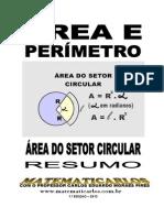 Area Do Setor Circular - Conteudo
