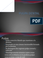 Presentación1 pulpa