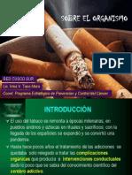 Efectos Del Tabaco 2012