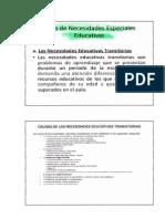 Tipos de Necesidades Educativas Especiales (1)