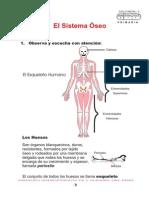 LOS HUESOS.pdf