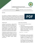 informe 5 hidrocarburos 2