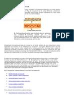 Sistema Electricos (1)
