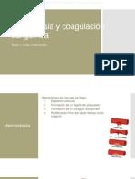 Hemostasia y coagulaci+¦n sangu+¡nea