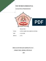 Cover Gambar Sistem Muskuloskeletal Dan Integumen