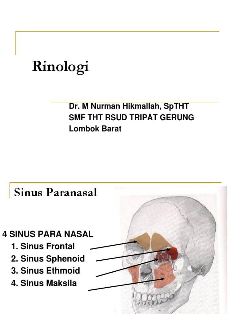 Rhinologi(Sinusitis)& RA | Allergen | Allergy