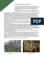 Quelques aspests de la vallée à l'automne 2013.pdf