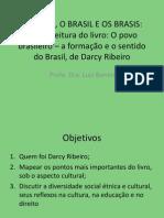 opovobrasileiroaformaoeo-091011193456-phpapp02