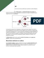 Fisión nuclear.docx