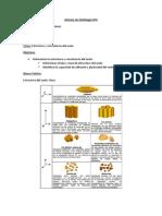 Informe de Edafología Nº4