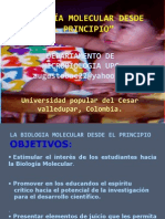 CLASE2LABIOLOGIAMOLECULARDESDEELPRINCIPIO