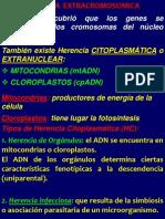 Clase UNIDAD 7 Herenc Citopl