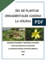 FICHERO DE PLANTAS ORNAMENTALES - ROSALBA CUPA, NANCY ESPINOSA