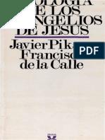 Javier Pikaza Teologia de Los Evangelios de Jesus