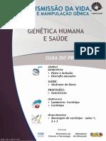Guia_6.2