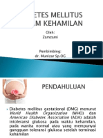 DMG 2013