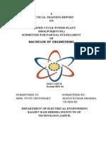 Dhaulpur Powerplant Report