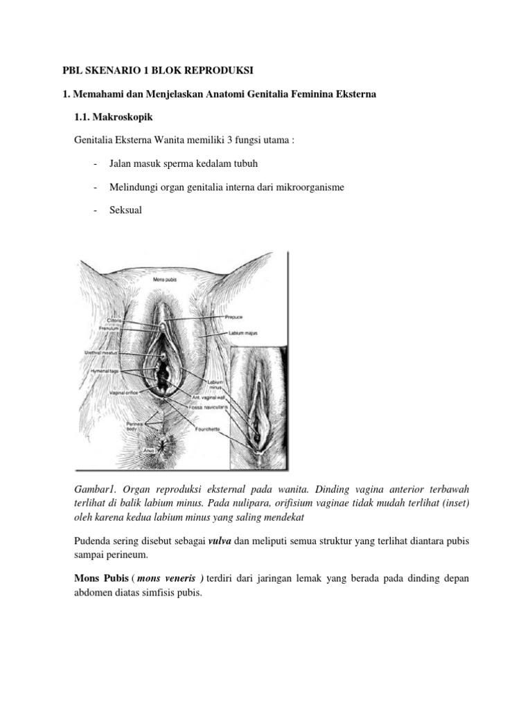 lehet ureaplasma condyloma emlékeztető és ajánlások a helminthiasis megelőzésére