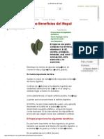 Los Beneficios del Nopal.pdf