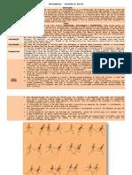 ATLETISMO - REVEZAMENTOS - PASSAGEM DE BASTÃO (2)