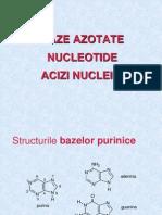 7. Baza Azotate. Acizi Nucleici