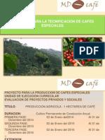 Tecnificación de Café  Organico