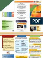 Triptico Plan de Estudios 2011