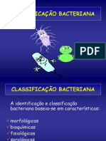 classificac3a7c3a3o-bacteriana-2011