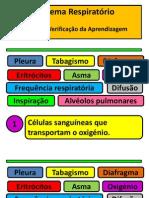 9.s.respiratorio.teste.1.Solucoespdf