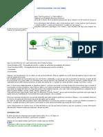 Microsoft Word - TEST ARBOL