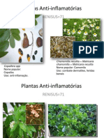 Plantas Anti-inflamatória