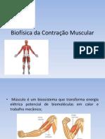 Biofísica da Contração Muscular 2013