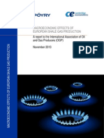 Public_report_ogp Macroeconomic Effects of European Shale Gas Production