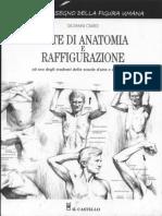 Giovanni Civardi - Note Di Anatomia e Raffigurazione