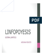 linfopoyesis_introductorio