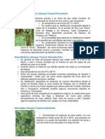 Biomas de Mexico