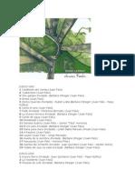 J. Falú - 3 CD - 50 Aniversario