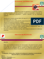 Tema a2 Proceso de Peletizado CON FIG
