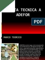 Visita Tecnica a Adefor