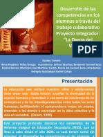 Proyecto La Danza Del Venado
