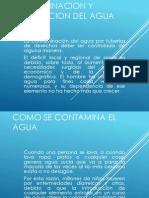 Contaminacion y Purificacion Del Agua