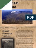Gunungapi  Tambora