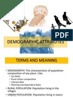 demographic attributes