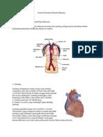 Sistem Peredaran Darah Manusia.docx