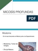 micosisprofundas.pptx
