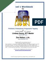 level 1 workbook for pro eft