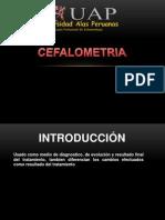Cefalometria EXPO